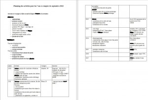 vp_planning