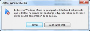 fileinfo-windowsmediaerror