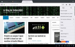 Le menu de Firefox augmenté avec les extensions